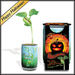 Happy Halloween Magic Beans Products