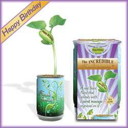 Magic Beans Products Happy Birthday Message