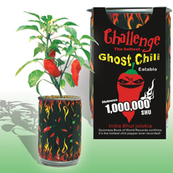 Ghost Chili Pepper Plant Growing Kits