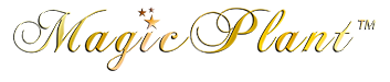 Magic Plant Logo