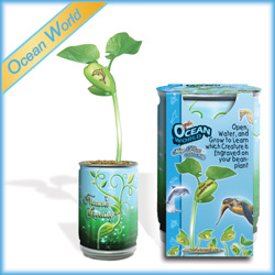 Ocean World Plant Growing Kits for Kids