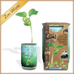 Zoo World Plants for Kids