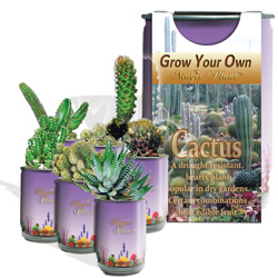 Cactus Growing Kits