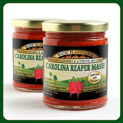 Carolina Reaper Pepper Mash