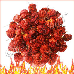 Carolina Reaper Dried Pods