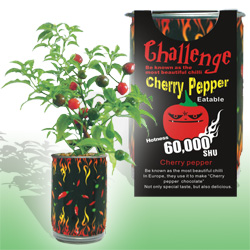 Hot Cherry Pepper Growing Kits
