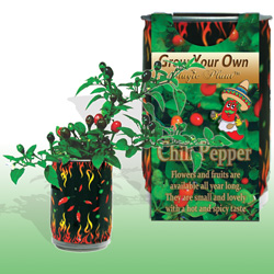Grow Your Own Chili Peppers
