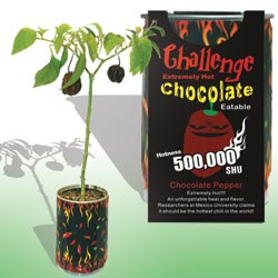 Chocolate Chili Pepper Growing Kits