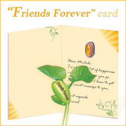 Nature's Greeting Card - Friends Forever Message