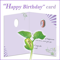 Happy Birthday Greeting Card Inside