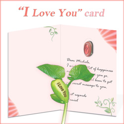 "Nature's Greeting Card  ""I Love You"""