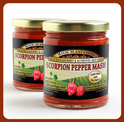Moruga Scorpion Pepper Chili Mash