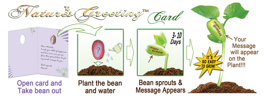 Natures-Greeting-Card-Growing-Stages