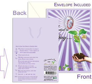 Nature's Greeting Card Front and Back View