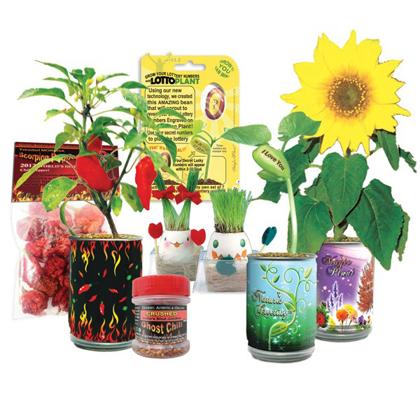 Order Samples of Magic Plant Farms Products