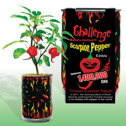 Scorpion Pepper Growing Kit